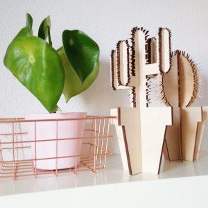 Lasergesneden 'Als je van Cactus hout'